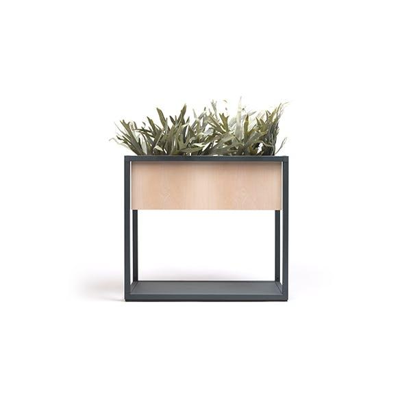 Dry Planter Box